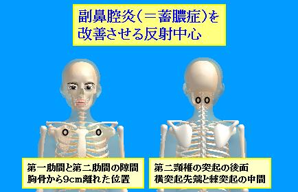 副鼻腔炎の反射ポイント.png
