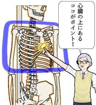 壇中周囲が生命力の優劣を見抜くポイント?!.jpg