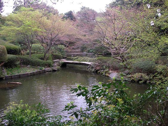 池田山公園池2.JPG