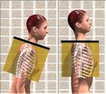 胸郭の立ち上り方の成否.png