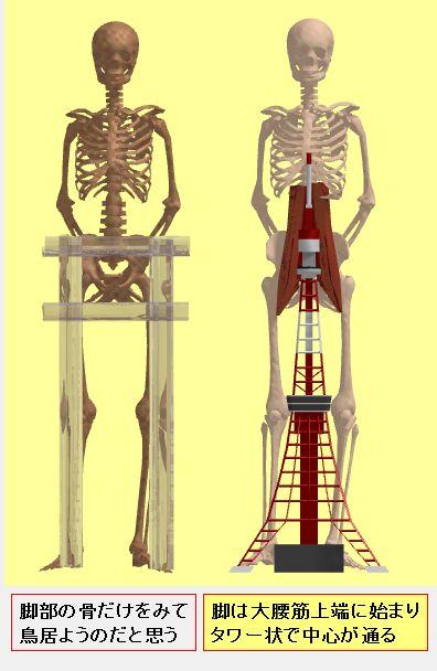 脚部のラーメン構造とツリー構造.jpg