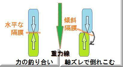 隔膜の軸の直行と軸ズレと.jpg