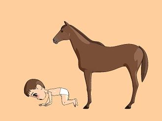 馬と赤ちゃん四つん這い.jpg