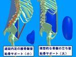 骨盤傾斜比較.jpg