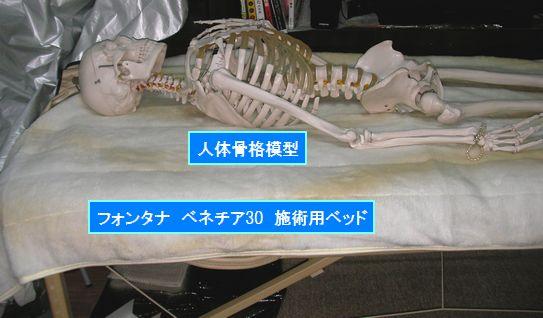 workbed-koyama.jpg