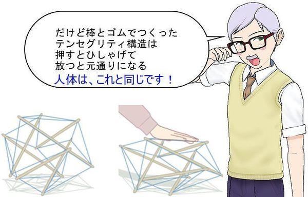 テンセグリティ構造なカラダ.jpg