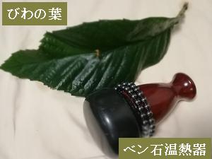 ビワの葉ベン石温熱器.png