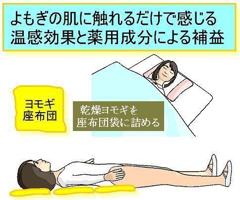 ヨモギ座布団.jpg