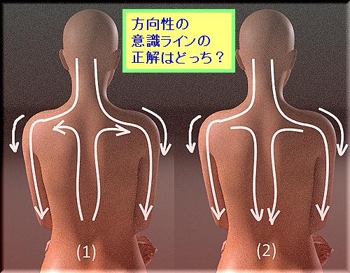 体幹と腕の方向性.png