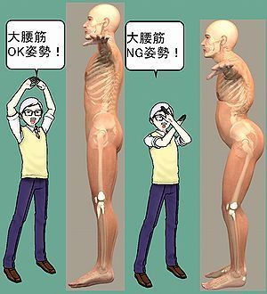大腰筋が使える使えない.jpg