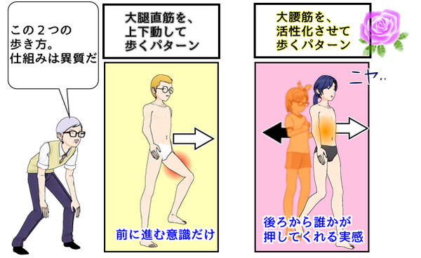 大腿直筋主体と大腰筋主体の歩き感覚の違いは?.png