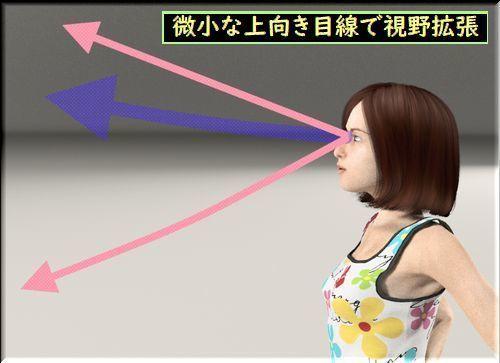 微小な上向き目線で視野拡張.jpg