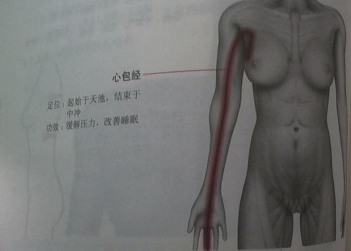 心包経.jpg