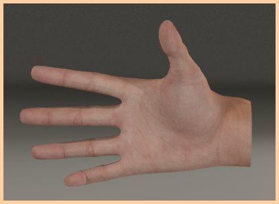 手.jpg