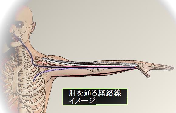 肘を通る経絡線ok.png