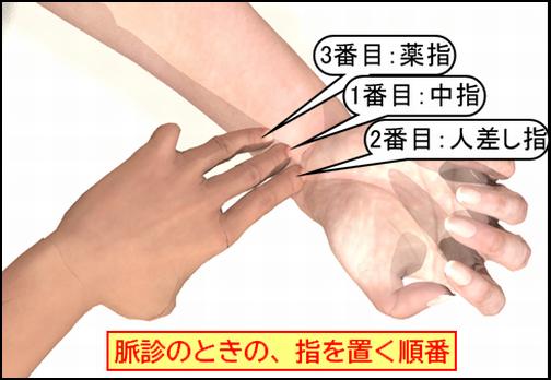 脈診時の指を置く順番.png
