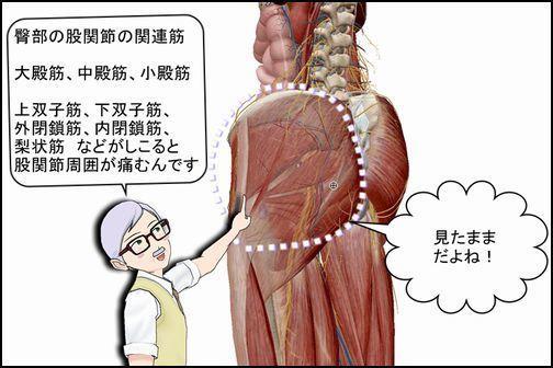 臀部筋のコリ.jpg