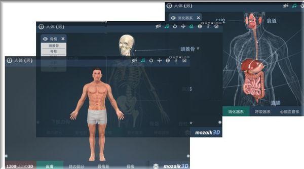解剖学ソフト.jpg