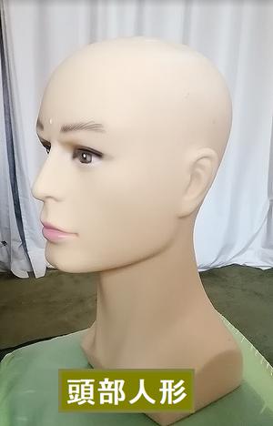 頭部人形.png