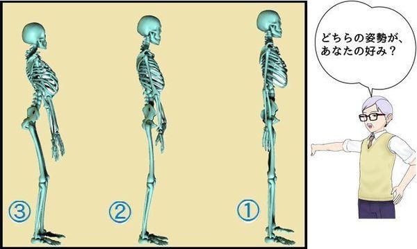 3つの姿勢比較.jpg